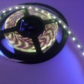 365nm UV LED Light Strip 60LEDs/M SMD5050 5M 300LEDs DC 12V
