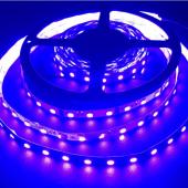 420-430nm UV SMD5050 LED Light Strip 60LEDs/M 5M DC12V