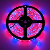 12V 5050 5M Plant Growing Strip LED Flex Red Blue 3:1 Light Hydroponic